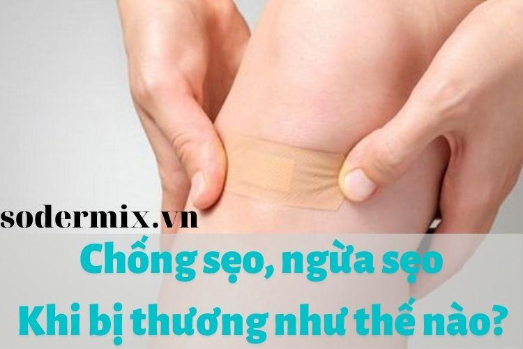 chong-seo-ngua-seo