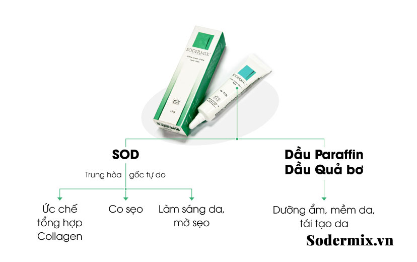tri-seo-loi-bang-kem-Sodermix